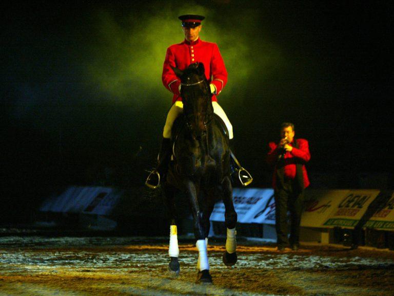 Passie voor paarden in Avignon